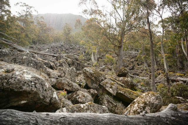 The rocky scree slope is an amazing sight to take in.