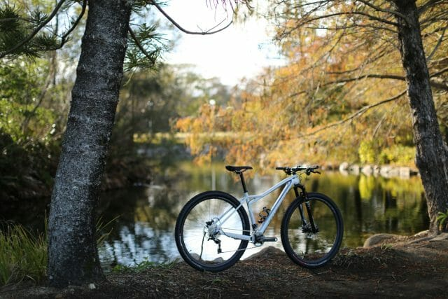 Specialized Fate 16