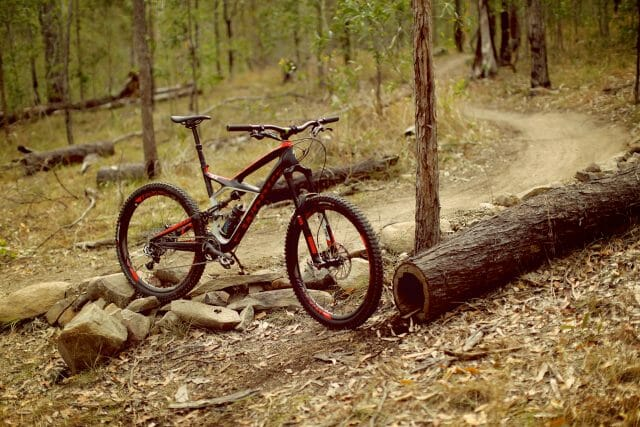 Specialized Enduro S-Works 22