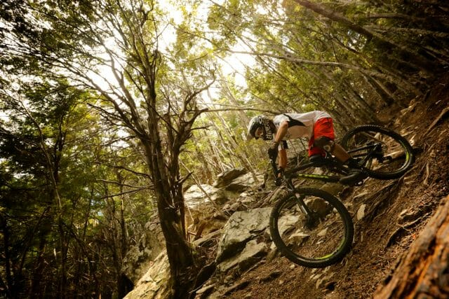 There's a real variety of trails in the Skyline MTB Park, from the buff and groomed, to the steep and loose.